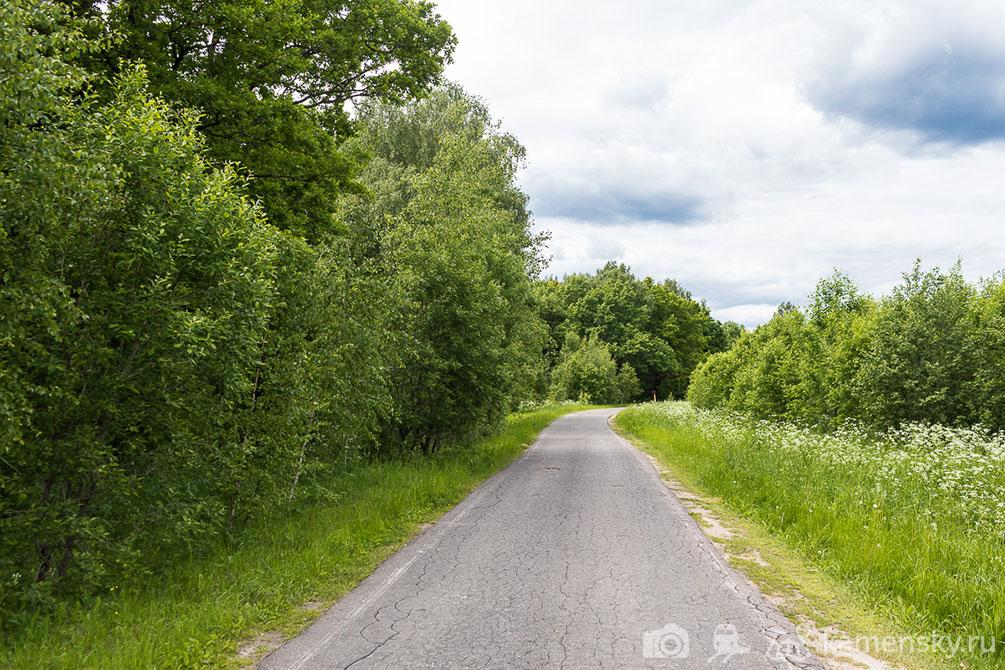 Московская область, дубрава, лето, хорошо, зеленая поляна, Фряново, Хлепетово