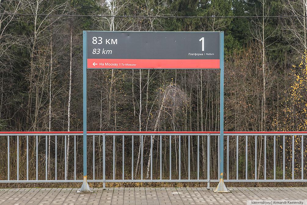 Московская область, Ярославское направление, осень, станции, платформы, хорошо, 83 км