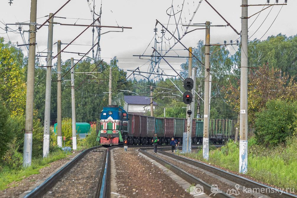 Московская область, лето, Ярославское направление, Пересвет