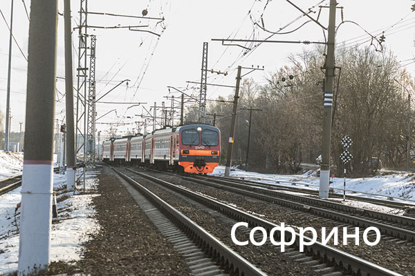 Ярославское направление МЖД, Софрино, Софрино-2, тупичка, электричка, осень, с удовольствием, собака